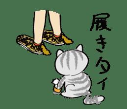 "cat ""tiger"" sticker #1109243"