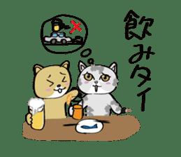 "cat ""tiger"" sticker #1109249"