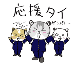 "cat ""tiger"" sticker #1109250"