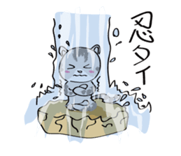 "cat ""tiger"" sticker #1109251"