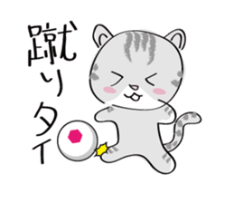 "cat ""tiger"" sticker #1109255"