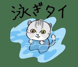 "cat ""tiger"" sticker #1109258"