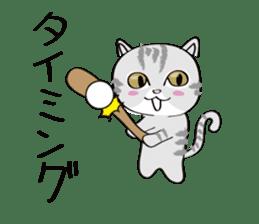 "cat ""tiger"" sticker #1109261"