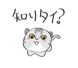 "cat ""tiger"" sticker #1109262"