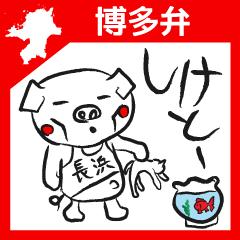 Hakata Son of a pig