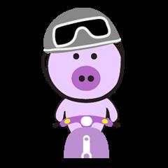 Piglet - Phoebe