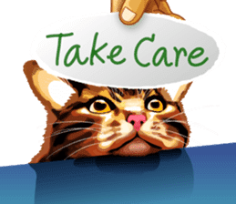 Meme The Cat sticker #1144934