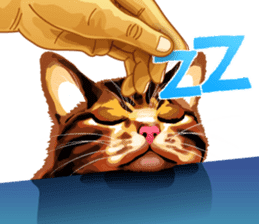 Meme The Cat sticker #1144935