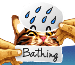 Meme The Cat sticker #1144943