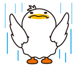 Every day of a duck sticker #1146098
