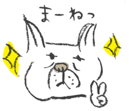 Funny faces of French bulldog SAKI sticker #1148231