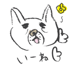 Funny faces of French bulldog SAKI sticker #1148234