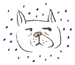 Funny faces of French bulldog SAKI sticker #1148241