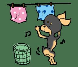 Scarf Minipin festival! sticker #1152917