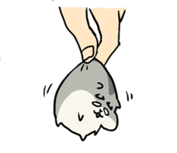 Furry hamster and his fluffy friends sticker #1162519
