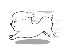 Xin Xin Maltese dog sticker #1166111