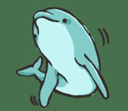 Dolphin Sticker sticker #1174571
