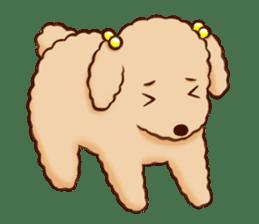 white pomeranian and puppies sticker #1175355