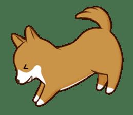 white pomeranian and puppies sticker #1175358