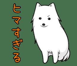 white pomeranian and puppies sticker #1175364