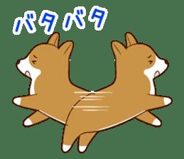 white pomeranian and puppies sticker #1175372