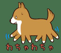 white pomeranian and puppies sticker #1175374