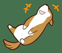 white pomeranian and puppies sticker #1175380