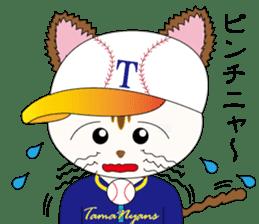 Baseball favorite cat sticker #1182037