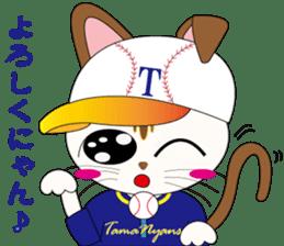 Baseball favorite cat sticker #1182044