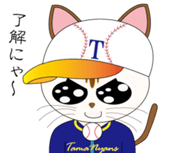 Baseball favorite cat sticker #1182052