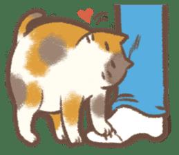 Cat weather sticker #1188162