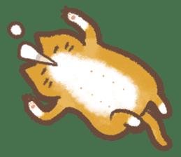 Cat weather sticker #1188170