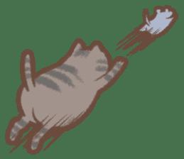 Cat weather sticker #1188175