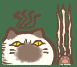 Cat weather sticker #1188180