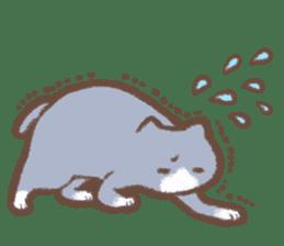 Cat weather sticker #1188182
