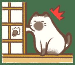 Cat weather sticker #1188184