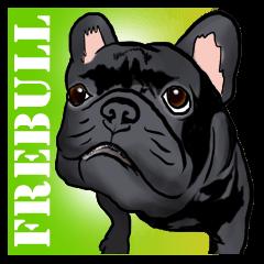 frenchbulldog's TOYkun 2
