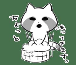 raccoon sticker #1199586