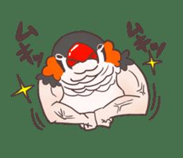Muscle zebra finch And Friends sticker #1205193
