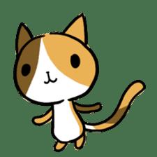 Calico cat sticker #1206264