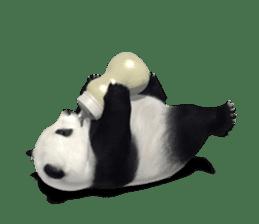 The Master Panda sticker #1230562