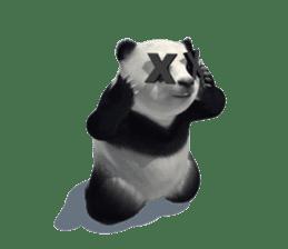 The Master Panda sticker #1230573