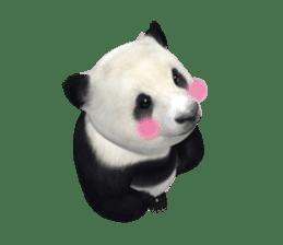 The Master Panda sticker #1230576