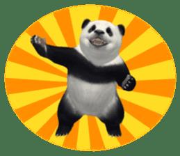 The Master Panda sticker #1230590