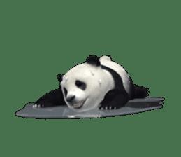 The Master Panda sticker #1230593