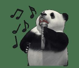 The Master Panda sticker #1230594