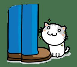 Natty Cat sticker #1231406