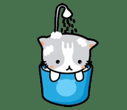 Natty Cat sticker #1231432