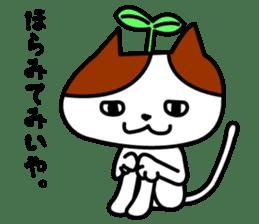 Tosa language cat. sticker #1234004