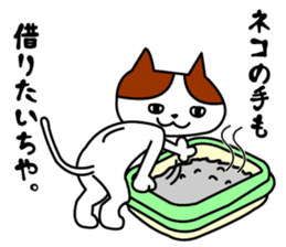 Tosa language cat. sticker #1234030